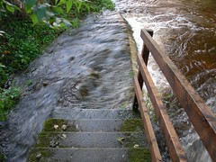 steps_flooded