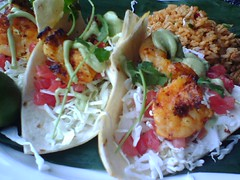 Big Fish Shrimp Tacos