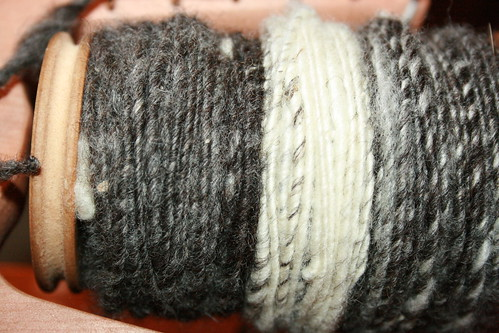 Finnsheep single, spun by the Mr.