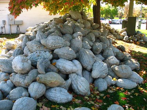 Mound of squash
