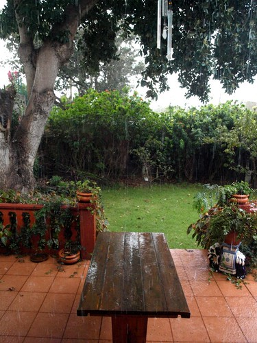 Who says the north of Tenerife is rainy and cloudy?