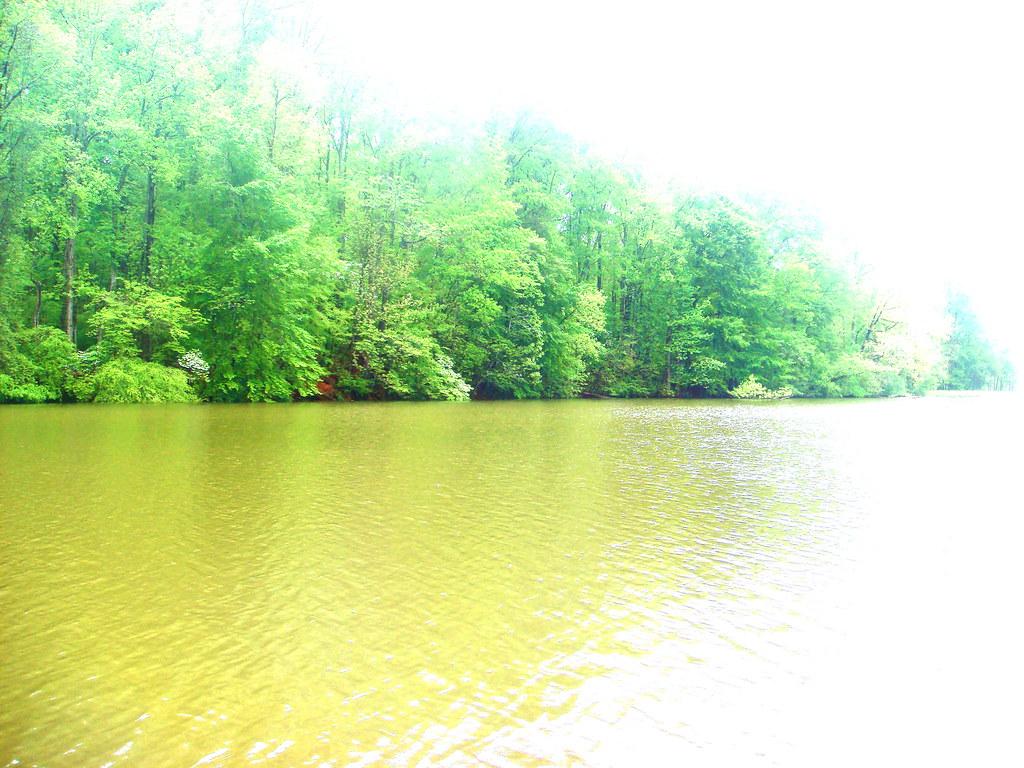 Abstract Lake, Two