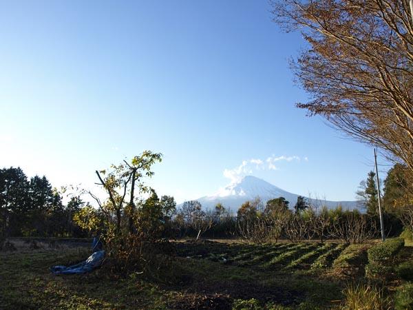 御殿場からの富士山 1