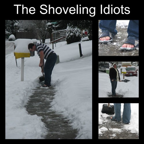 Shoveling Idiots