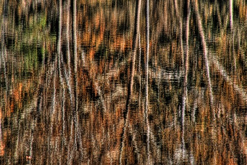 Impressionism—Wood on the Lake