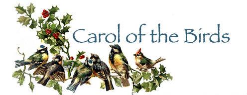 birdcarol.jpg  3