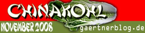 Garten-Koch-Event Chinakohl