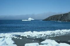 Sea ice, ice berg and fog.