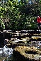 Aysgarth Falls 4