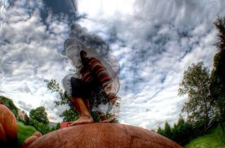Aus dem Ei (foto: fognin)