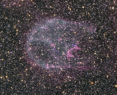 A supernova remnant in the Large Magellanic Cl...