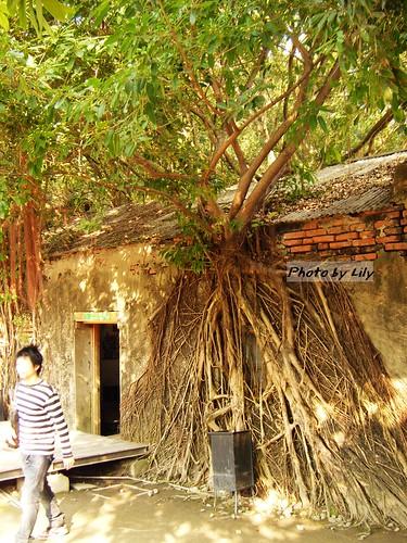 安平樹屋側面