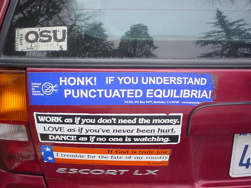 Honk Honk!