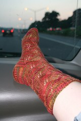 2008-07-05-embossed-leaves-sock1