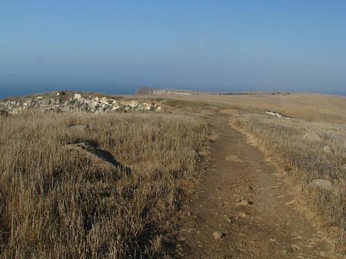 Santa Cruz 09