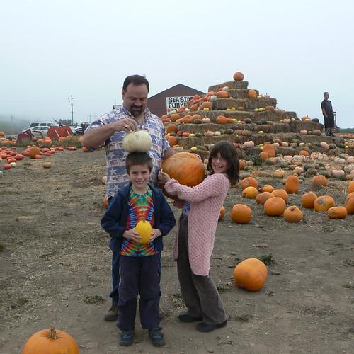 Pumpkins 2008