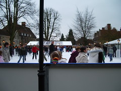 Skating in Cathedral Close