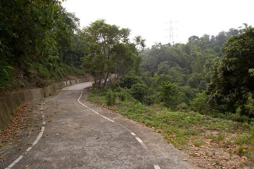 Bike Path 4