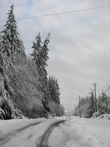 I think this is Clemons Rd just west of Montesano