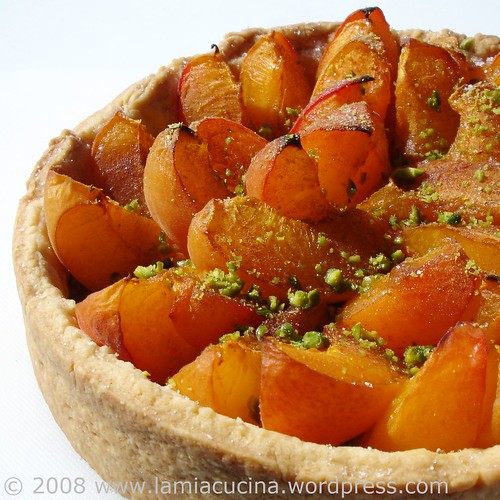 Aprikosenwähe