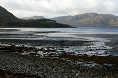 Low tide on Loch Nevis