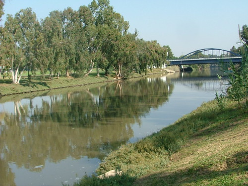 The Yarkon River after a pollution incident