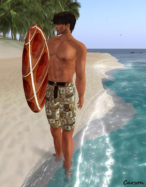 Brat! Brown Hawaiian Board Shorts and Surf Board (2)