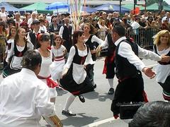 Parade der Kulturen Ffm 2008 (14)