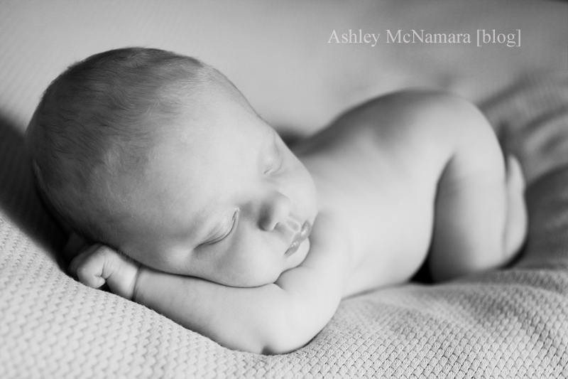 Pretty convinced he would be too old to do any of the newborn curled up shots but much to my surprise he was an angel and slept for half the session