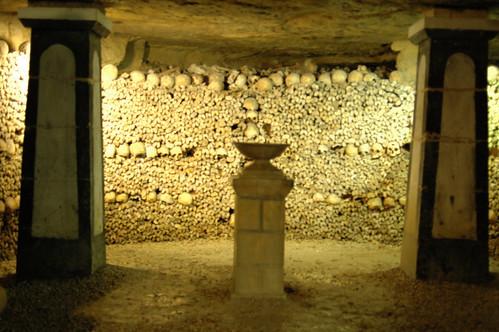 The sheer quantity of bones was crazy.