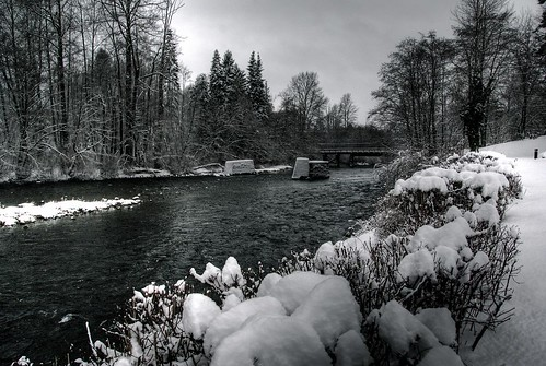 Puntledge River in the winter