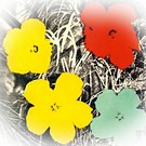 Andy Warhol, Flowers. 1970.