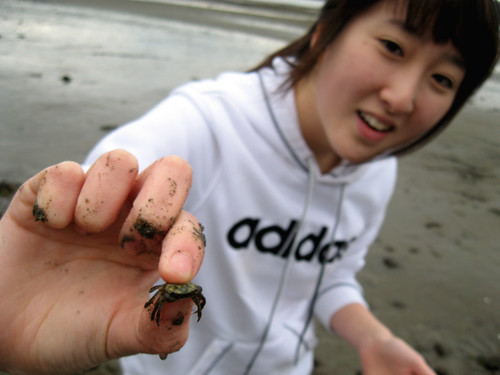 Finding crabs.