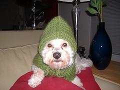 erniesweater2