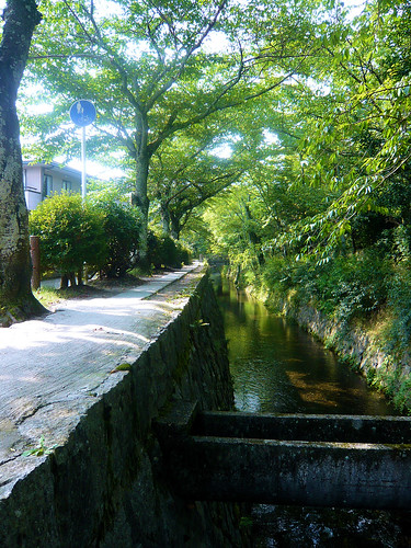Philosopher's Walk -  Tetsugaku no michi
