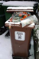 Conteneur à déchets végétaux
