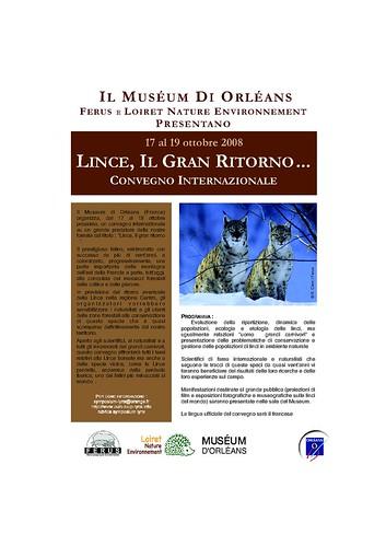 download pdf in italian version