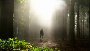 Prayers for Coming into Balance | Robbins Hopkins