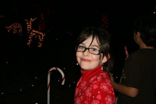 Christmas Lights at Lake Myra