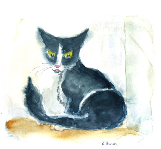 devil-cat