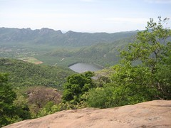 Shenbaga Thoppu Dam 1