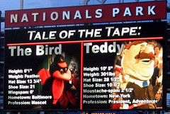 Nationals Park Scoreboard Statistics for Teddy Roosevelt and the Orioles Bird