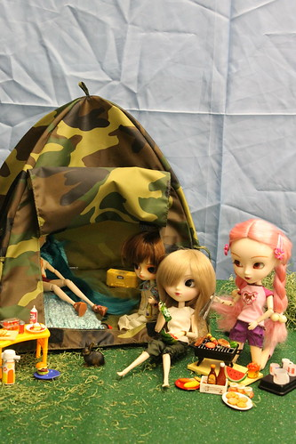 @ Animadness- Let's go camping!
