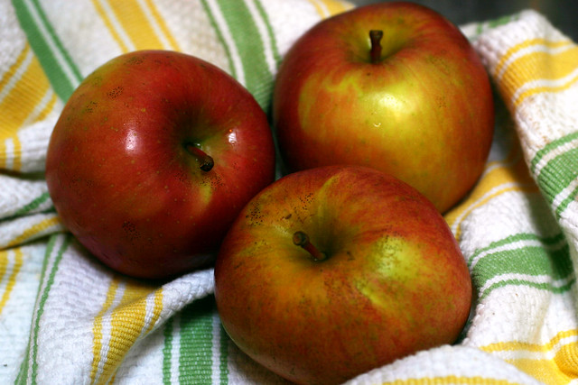 apples from the greenmarket