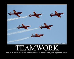 Teamwork - RAAF Roulettes by naemick