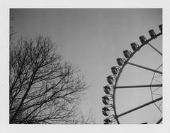 Wheel of Mayhem