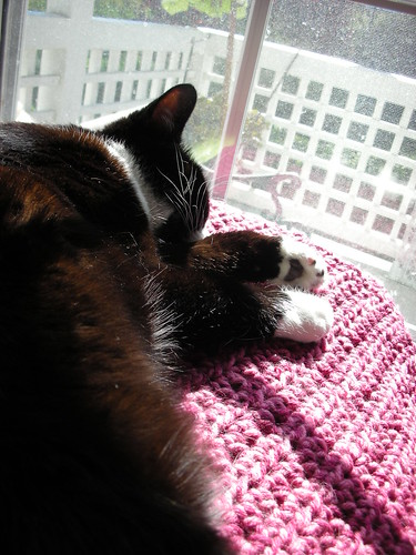 Toasting toesies in the sun