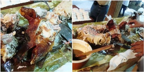 lechon aftermath