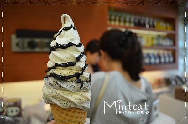 【中壢美食大蒐秘】別地方沒有的真正台灣味冰淇淋就在張豐盛商行