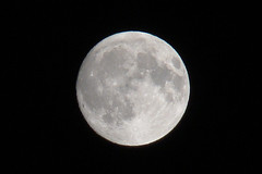 One day before the August full moon